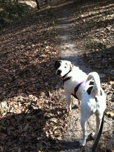 Chloe loves South Carolina. She didn't have to work there, though (or anywhere for that matter).